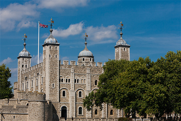 Tower of London Canvas print by David Tyrer