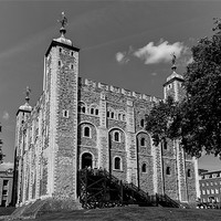 Buy canvas prints of Tower of London by David Tyrer