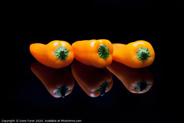 Orange Bell Peppers and reflections Acrylic by Dave Tyrer