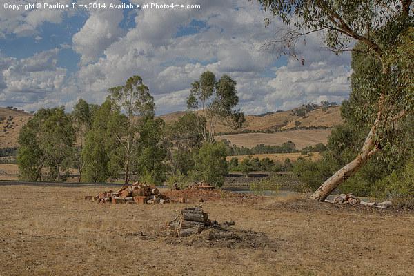 Landscape at Strath Creek, Victoria Canvas print by Pauline Tims