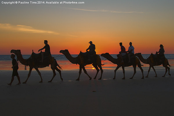 Camels on the Beach at Broome W.A Canvas print by Pauline Tims