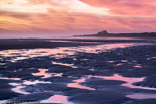 Northumberland Sunrise Canvas Print by P H