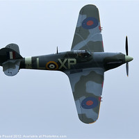 Buy canvas prints of Spitfire in Flight by Philip Pound