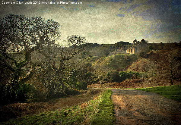 An Anglesey Lane Print by Ian Lewis
