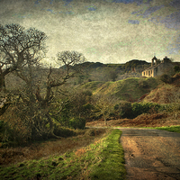 Buy canvas prints of  An Anglesey Lane by Ian Lewis