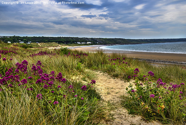 Port Eynon Sand Dunes Canvas print by Ian Lewis