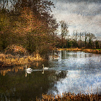 Buy canvas prints of Winter Scene On The Kennet And Avon by Ian Lewis