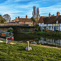 Buy canvas prints of The Swan Family Visiting Hungerford by Ian Lewis