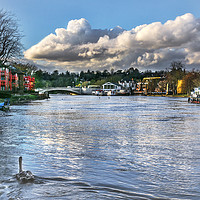 Buy canvas prints of The River Thames at Reading by Ian Lewis