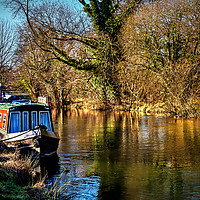 Buy canvas prints of The Kennet In January Sunshine by Ian Lewis