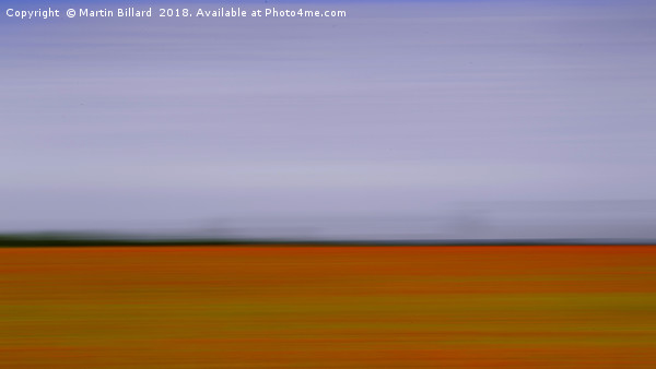 Poppy Field Canvas print by Martin Billard