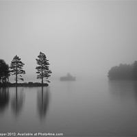 Buy canvas prints of Loch Eilein Morning by Don Hooper