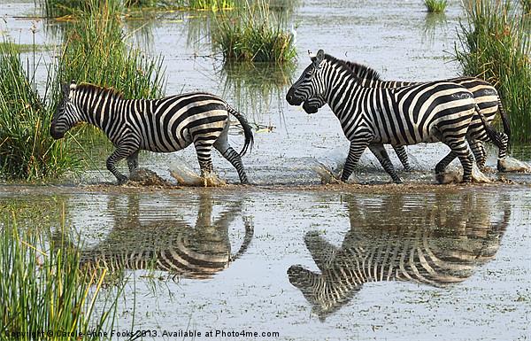 Zebra Crossing Kenya Canvas print by Carole-Anne Fooks