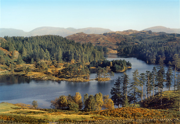 Tarn Hows The Lakes District Canvas print by Carole-Anne Fooks