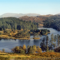 Buy canvas prints of Tarn Hows The Lakes District by Carole-Anne Fooks