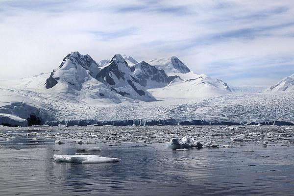 Glaciers in Cierva Cove Antarctica Canvas print by Carole-Anne Fooks