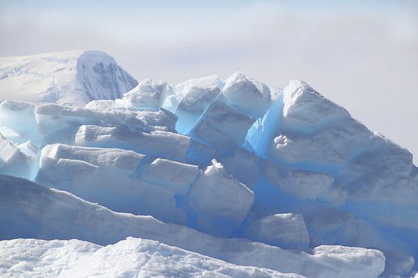 Iceberg Detail Cierva Cove, Antarctica Canvas print by Carole-Anne Fooks