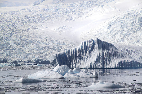 Cierva Cove Iceberg & Glaciers Canvas print by Carole-Anne Fooks