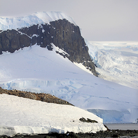 Buy canvas prints of Trinity Island & The Antarctic Peninsula by Carole-Anne Fooks