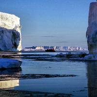 Buy canvas prints of Tabular Icebergs, Cape Roget, Antarctica by Carole-Anne Fooks
