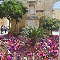 Buy canvas prints of Upper Barrakka Gardens, Valletta, Malta. by Carole-Anne Fooks
