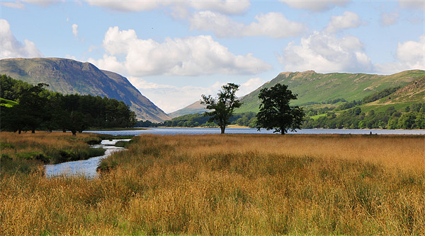 Buttermere Canvas print by Michelle PREVOT