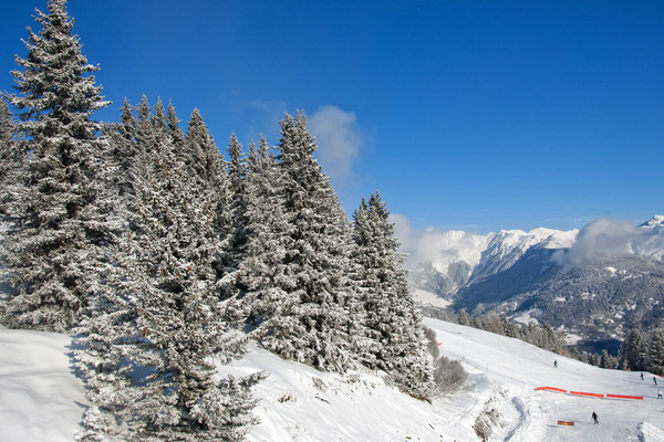 Courchevel 1850 3 Valleys French Alps France Canvas print by Andy Evans