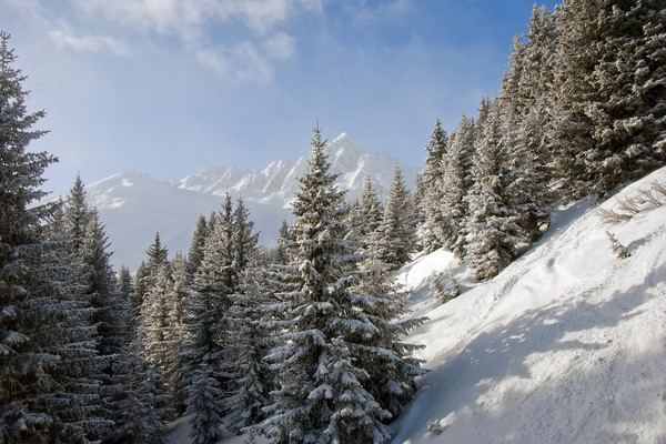 Courchevel 1850 3 Valleys Alps France Canvas print by Andy Evans