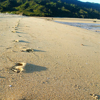 Buy canvas prints of Footprints by Jon Jaques