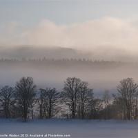 Buy canvas prints of Misty Treetops by Jennifer Watson