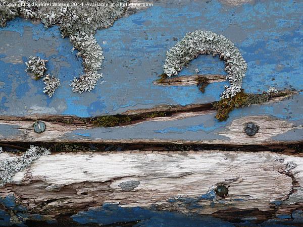 Blue Lichen Canvas print by Jennifer Watson