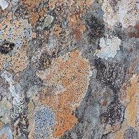 Buy canvas prints of Moonscape by Jennifer Watson