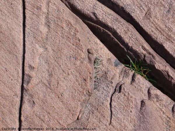 On the rocks Canvas print by Jennifer Watson
