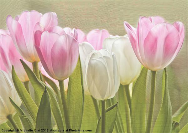 Translucent Tulips Canvas print by Michelle Orai