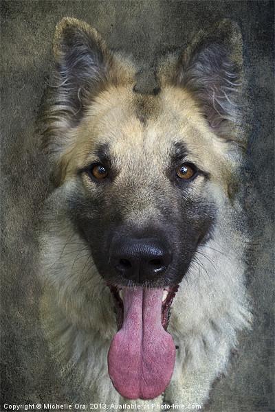 German Shepherd Dog Canvas print by Michelle Orai