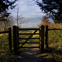 Buy canvas prints of Gateway to the countryside by Michelle Orai