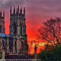 Buy canvas prints of York Minster Sunset by Colin J Williams Photography