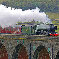 Buy canvas prints of Flying Scotsman At The Ribblehead Viaduct 2 by Colin Williams Photography