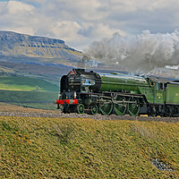 Buy canvas prints of Tornado 60163 and Pen-y-Ghent Yorkshire - 1 by Colin Williams Photography