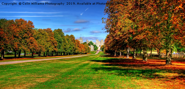 Windsor Castle Panorama Canvas print by Colin Williams Photography