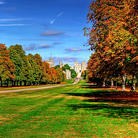 Buy canvas prints of Windsor Castle Panorama by Colin Williams Photography
