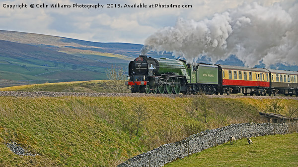 Tornado 60163 and Pen-y-Ghent Yorkshire - 2 Canvas print by Colin Williams Photography