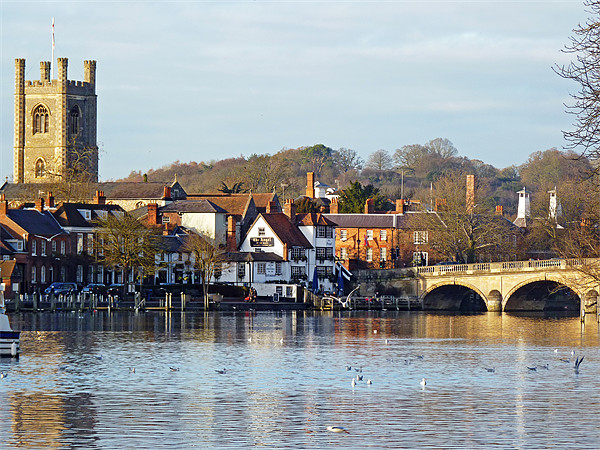 Henley-on-Thames Canvas Print by Tony Murtagh