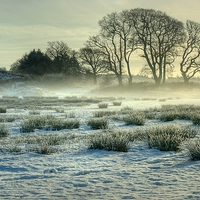 Buy canvas prints of The Frozen Meadow by Jamie Green Voluntary Ranger