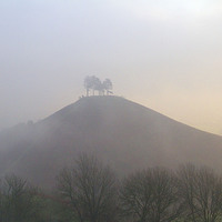 Buy canvas prints of Colmers Hill, Bridport, Dorset 2 by Colin Tracy