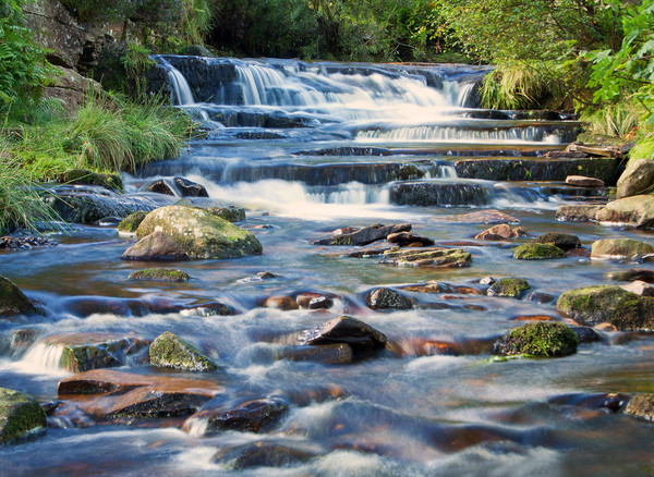Bronte Waterfall Canvas Print by David McCulloch