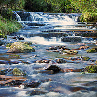 Buy canvas prints of Bronte Waterfall by David McCulloch
