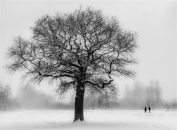 Walking in a winter Wonderland Canvas print by Ian Hufton