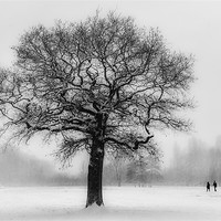 Buy canvas prints of Walking in a winter Wonderland by Ian Hufton