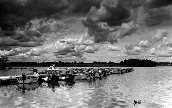 Rutland Water Hire Boats Framed Print by Adam Payne